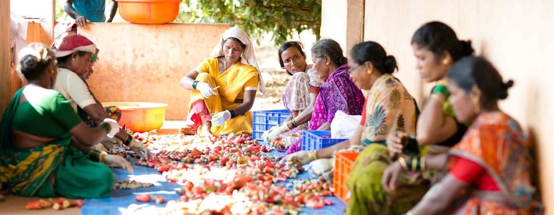 Business Groups Covered By the Janashree Bima Yojana (JBY)