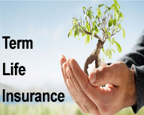 What is Term Insurance Policy