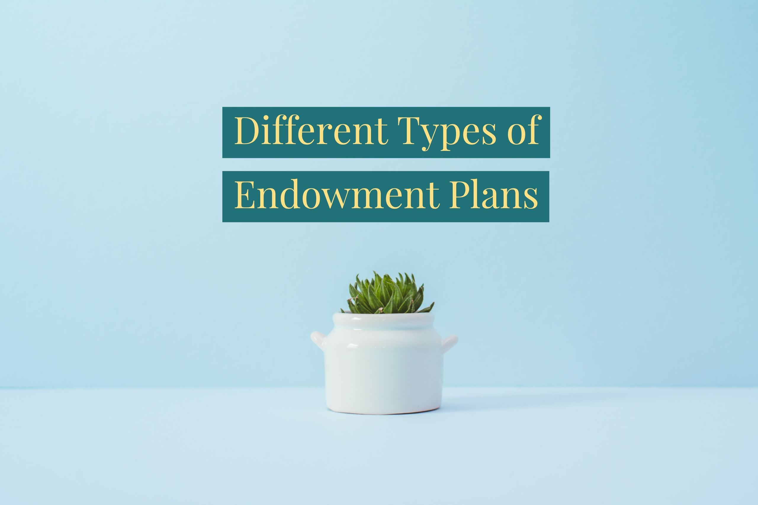 What Are The Types Of Endowment Policy