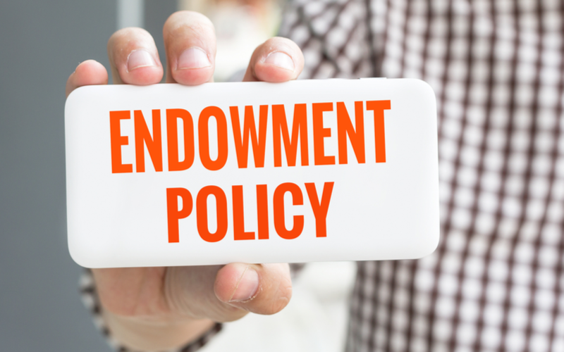 types of endowment policy