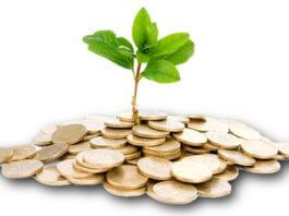 What is Venture Capital Insurance