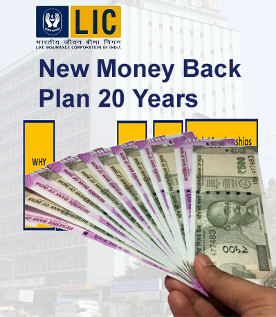 New Money Back Plan - 20 Years