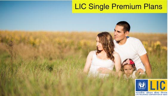 single premium plan