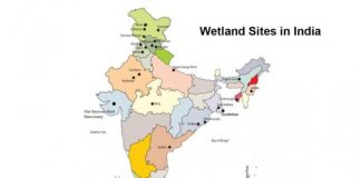 Environmental Policy And Associated Schemes Introduced For Wetlands1