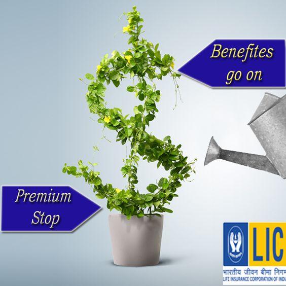benefits Of Bima Kiran Plan